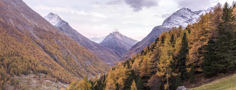 Herbst- / Ortsaufnahmen